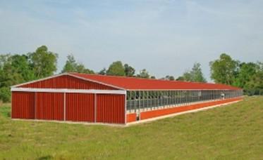 <p>Horse Barns</p>