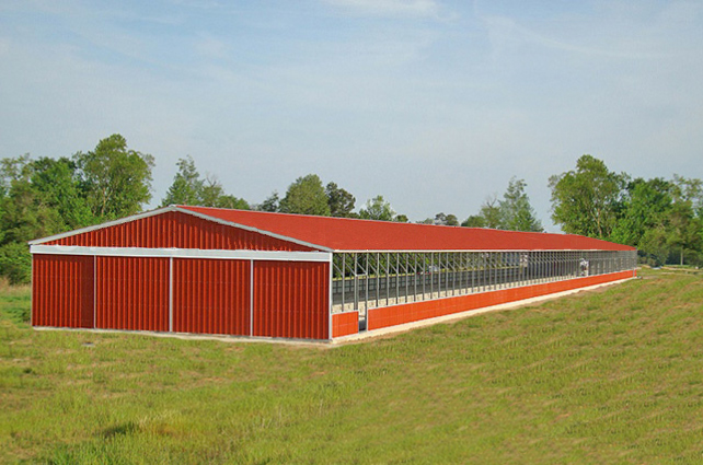 Horse Barns in FL